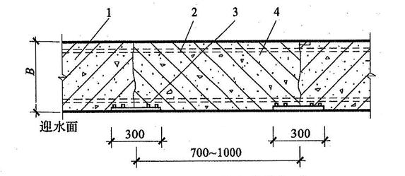 图5.2.5-2 后浇带防水构造(二)