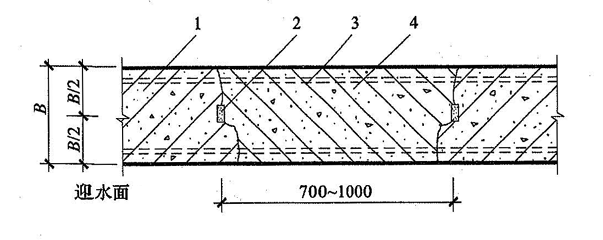 图5.2.5-3 后浇带防水构造(三)