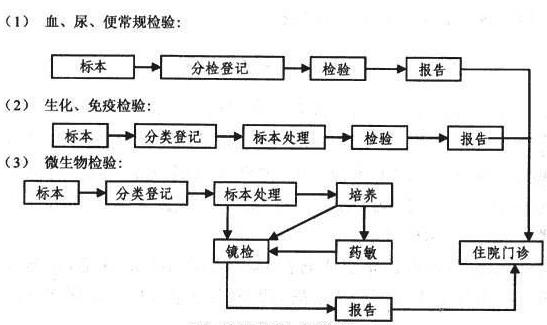 图1 检验科的工作流程