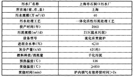 表31 国内污泥焚烧情况