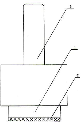 图1 电极